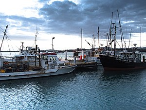 New Zealand Fishing Boat-3388.jpg