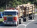 New Zealand Trucks - Flickr - 111 Emergency (260).jpg