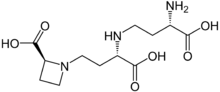Nicotianamine.PNG