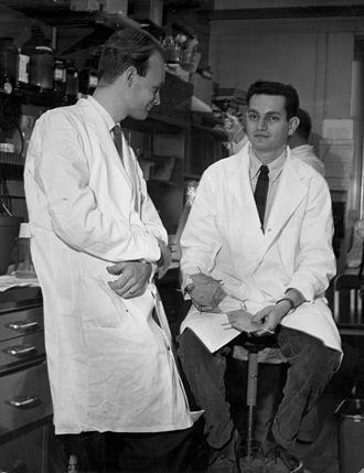 Marshall Warren Nirenberg - Nirenberg (right) and Matthaei from 1961