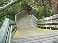 North PB FL MacArthur Beach SP stairs02.jpg
