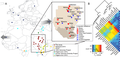 Northeast African genomic variation Fst.PNG