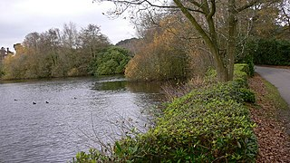 Forest Mere Site of Special Scientific Interest