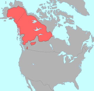 sub-grouping of the Athabaskan language