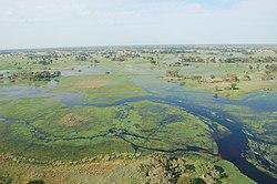 Okavango Delta, Botswana (2674364913).jpg
