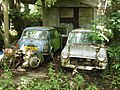 Old minis - geograph.org.uk - 192917.jpg