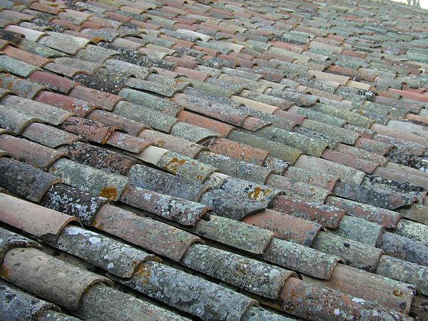 Old roof pattern texture.jpg