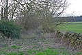 Overgrown track to Green Hill Lodge Farm - geograph.org.uk - 350320.jpg