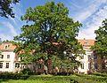 Ozolmuižas pils (Ozolmuiza palace) - Uldis Osis - Panoramio.jpg