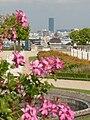 P1050859 Tour Montparnasse depuis la terrasse des orangers.JPG