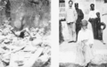 PSM V61 D364 Victims of the eruption in st pierre martinique 2.png