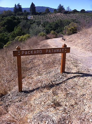 Purisima Creek (Santa Clara County) - Packard Pathway descends from Taafe Road along Purisima's Creek north fork.