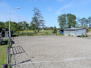Paddock type of small enclosure for horses