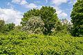 Paderborn - 2016-05-16 - PB-053 Steinbruch Ilse (035).jpg