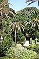 Palme al Parco di Monserrato.jpg