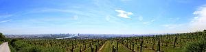 Kahlenberg - Image: Panorama Wien, Kahlenberg