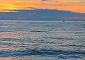 Paola (CS) - mare arancio al tramonto.JPG