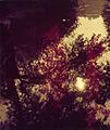 Paolo Monti - Serie fotografica - BEIC 6340931.jpg