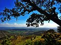 "Parc National Djurdjura, Bouira, Algerie "" une vue sur l'horizon, wilaya de bouira"".jpg"