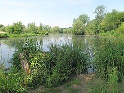 Parc de la Bouvaque2.jpg