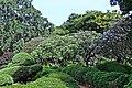 Park Garden Botanical Garden Greenery Lal Bagh (48186393327).jpg