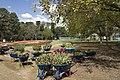 Parkes ACT 2600, Australia - panoramio (2).jpg