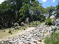 Parque del Este 2012 048.JPG