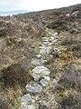 Path over Cro nan Laogh (geograph 2920708).jpg