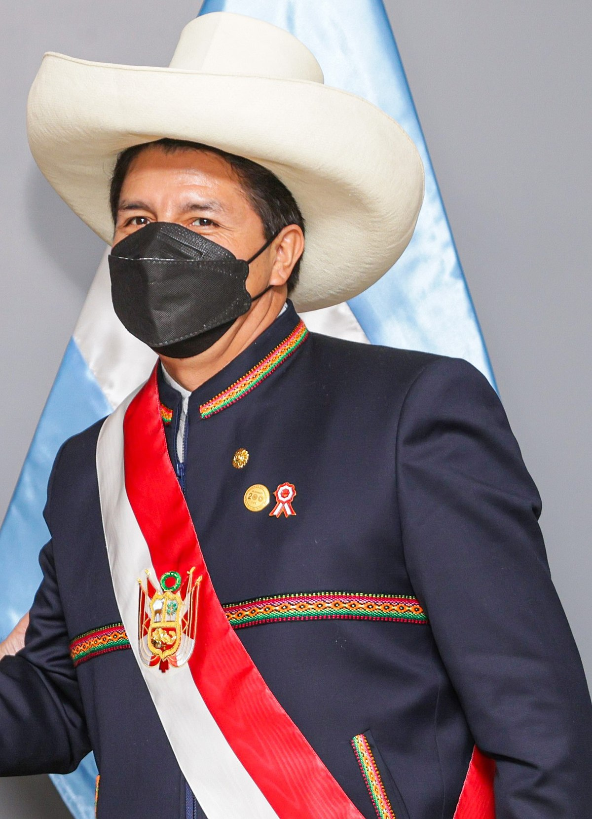 Gobierno de Pedro Castillo - Wikipedia, la enciclopedia libre