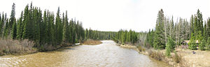 Pembina River (Alberta) - The Pembina River from Alberta Highway 40