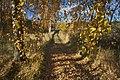 PermaLiv kulturlandskap i høstfarger 17-10-20 3.jpg
