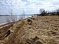 Permskiy r-n, Permskiy kray, Russia - panoramio (971).jpg