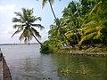 Perumpalam island - panoramio (1).jpg