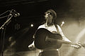 Pete Doherty,Festival We Love Green, photo F. Loock (6).JPG