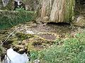 Petit lac à la base de la cascade pétrifiante.JPG