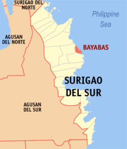 Map of Surigao del Sur with Bayabas highlighted