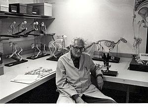 Philip Hershkovitz - 1987 Fieldiana Zoology, No: 39 (festschrift)