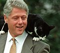 Photograph of President William Jefferson Clinton with Socks the Cat Perched on Clinton's Shoulder- 03-07-1995 (6461520859) (cropped2).jpg