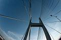 PhuMy bridge - Cầu Phú Mỹ6.jpg