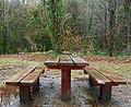 Picnic table, Glenoe - geograph.org.uk - 678496.jpg