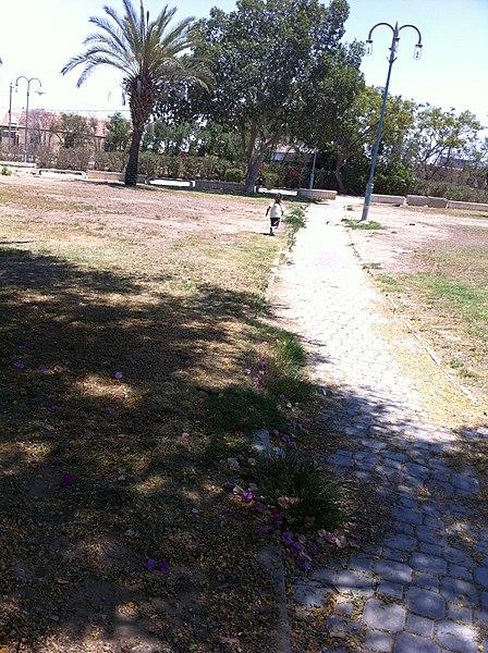 פארק הכיפה בירוחם