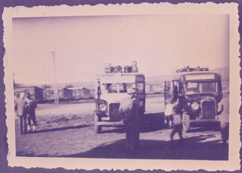 """אוטובוסים של חברת """"זבולון"""""""