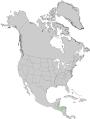 Pinus caribaea USGS range map.png