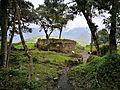 Plantes cobrint les ruïnes de Kuelap02.jpg