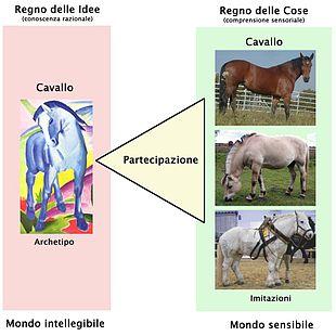 Schema concettuale dell'idea universale di Cavallo, di cui sono partecipi i singoli cavalli particolari.
