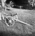 Plužna pluga, Dobrava 1957.jpg