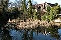 Pond at Kynaston Farm - geograph.org.uk - 115439.jpg