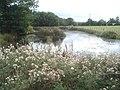 Pond south of Broom's Green - geograph.org.uk - 567897.jpg