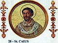 Pope St Gaius of Rome 283-296.jpg