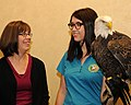 Posing for picture with Bald Eagle. (10596787486).jpg